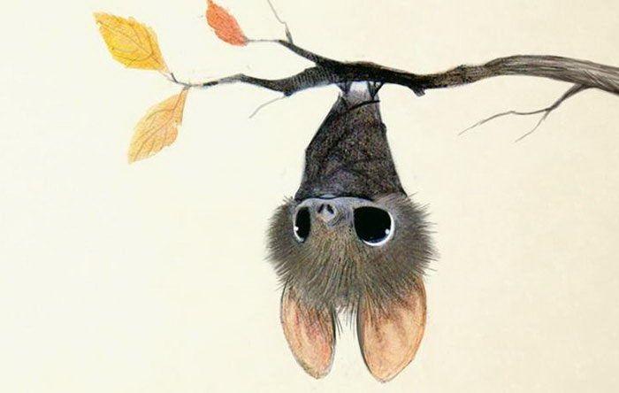 Милые рисунки животных 018