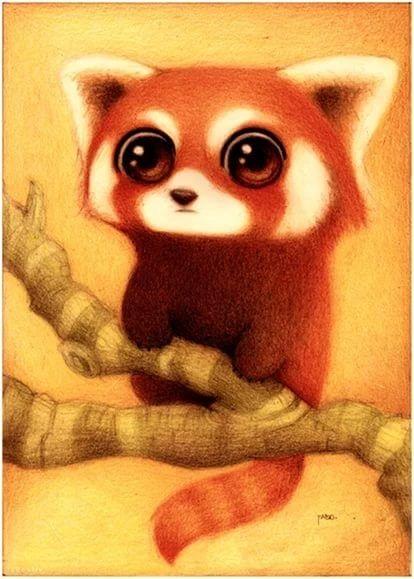 Милые рисунки животных 027