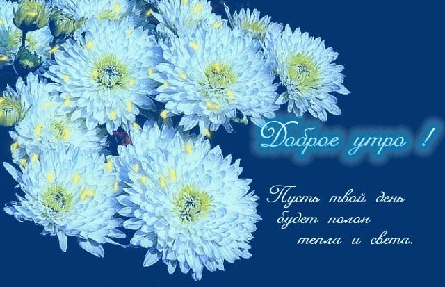 Сестра доброе утро открытки 020