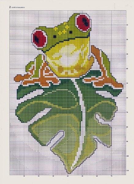 Схема лягушка вышивка 005