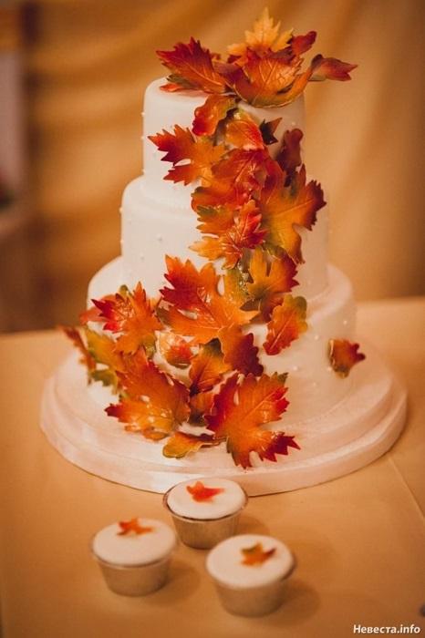 Торт в стиле осень 001