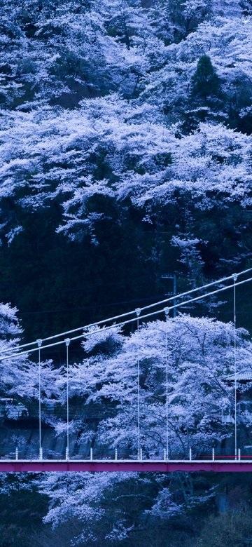 Япония обои на айфон 002