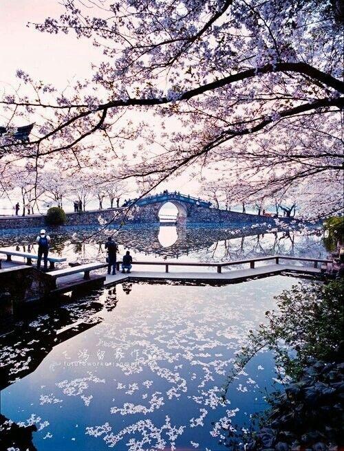 Япония обои на айфон 014