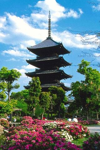 Япония обои на айфон 017