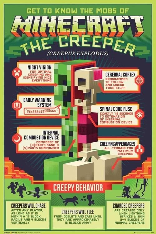 Minecraft плакат 014