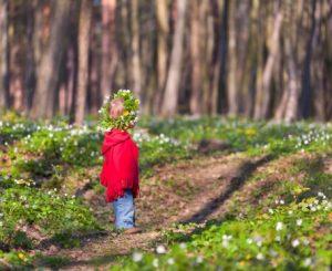 Девочки в лесу картинки для детей 029