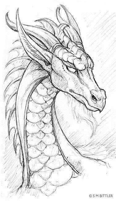 Картинки дракона карандашом для срисовки 001