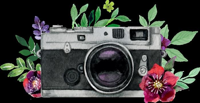 Рисунок фотоаппарата акварелью 011