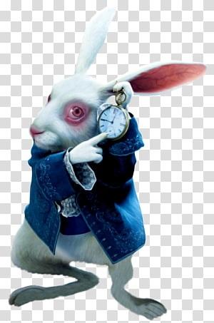 Картинки белого кролика из Алиса в стране чудес 012