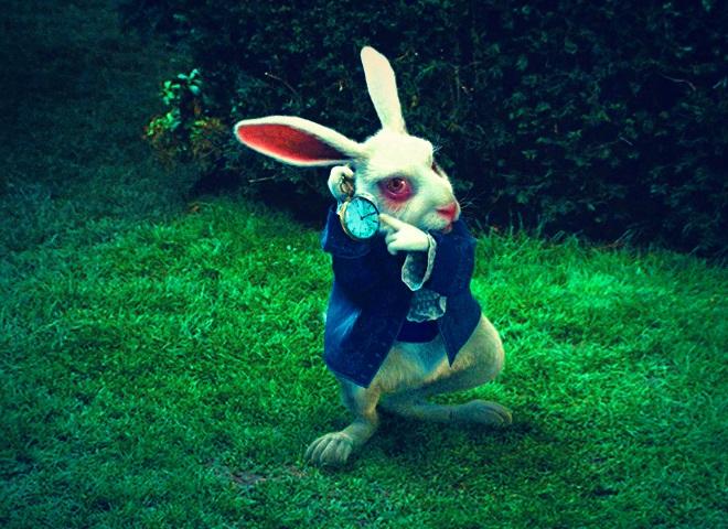 Картинки белого кролика из Алиса в стране чудес 019
