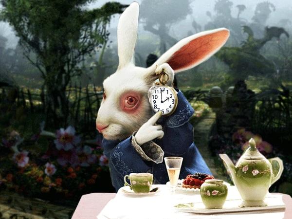Картинки белого кролика из Алиса в стране чудес 024