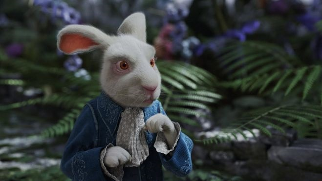 Картинки белого кролика из Алиса в стране чудес 026