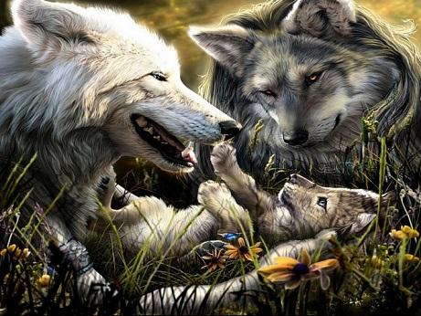 Картинки волка маслом для детей 001