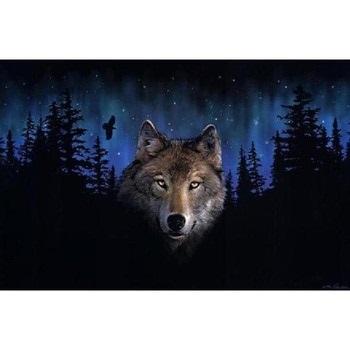Картинки волка маслом для детей 003