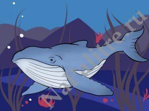 Красивые картинки нарисованного кита 026