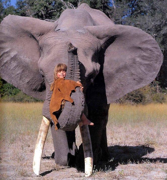 Красивые фото девушка на хоботе слона 001