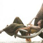 Красивые фото девушка на хоботе слона