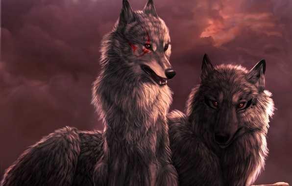 Крутые арты стая волков 001