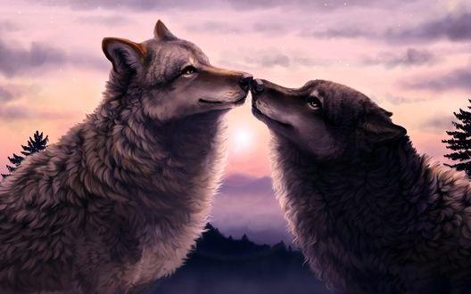Крутые арты стая волков 006