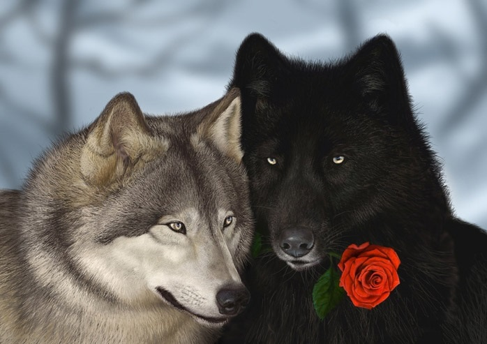 Крутые арты стая волков 008