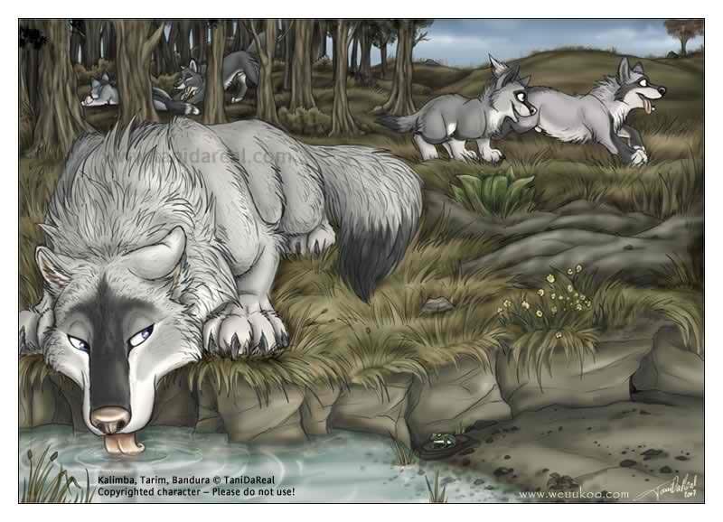 Крутые арты стая волков 015