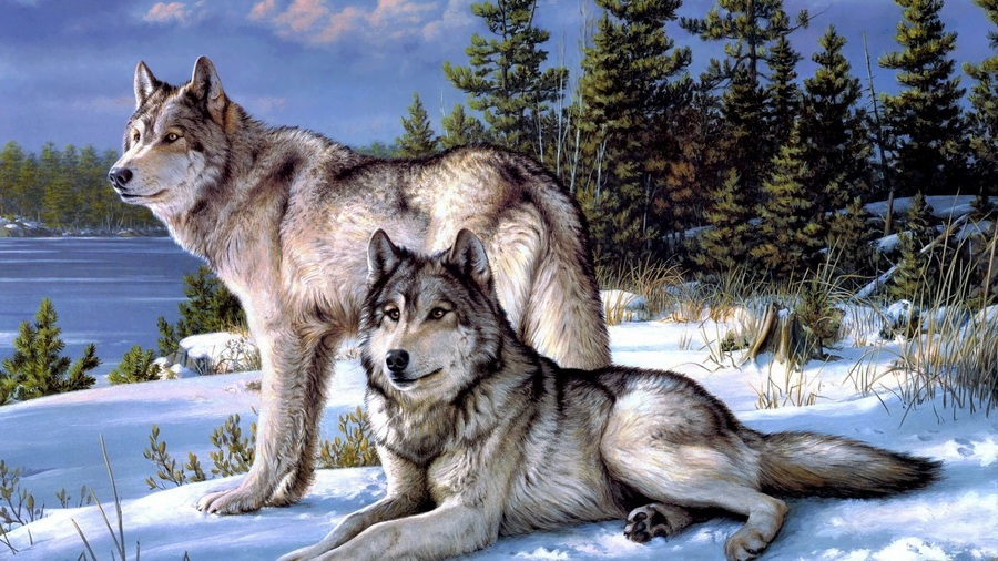 Крутые арты стая волков 021