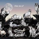 Крутые арты стая волков