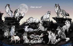 Крутые арты стая волков 025