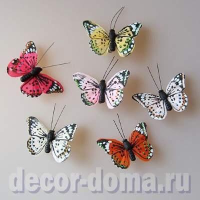 Милые картинки бабочки из перьев 002