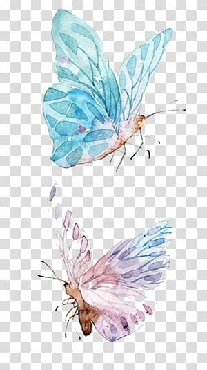 Милые картинки бабочки из перьев 003