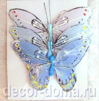 Милые картинки бабочки из перьев 006