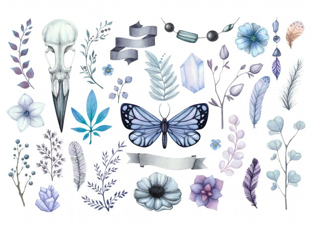 Милые картинки бабочки из перьев 008