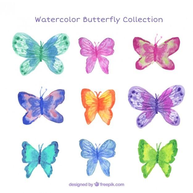 Милые картинки бабочки из перьев 010