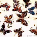 Милые картинки бабочки из перьев