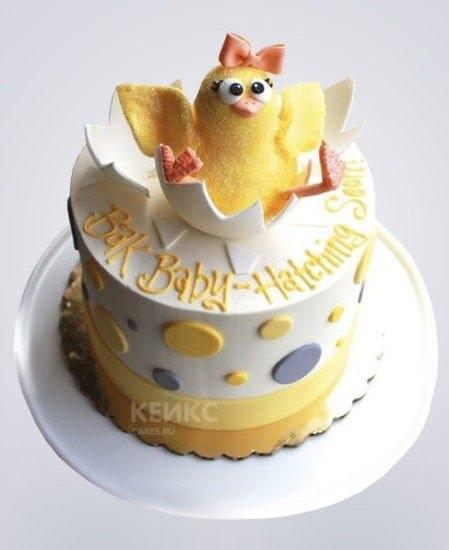 Прикольные фото торта с цыплёнком 001
