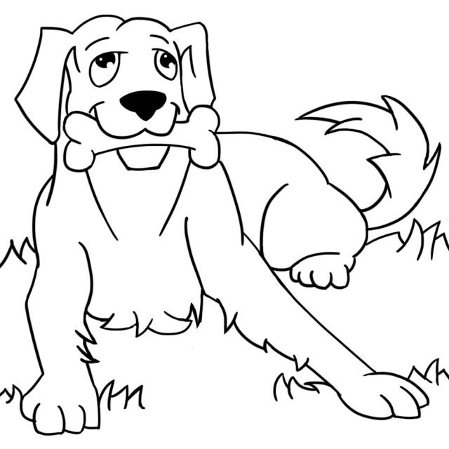 Забавные рисунки собак 010