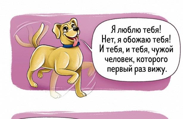 Забавные рисунки собак 015