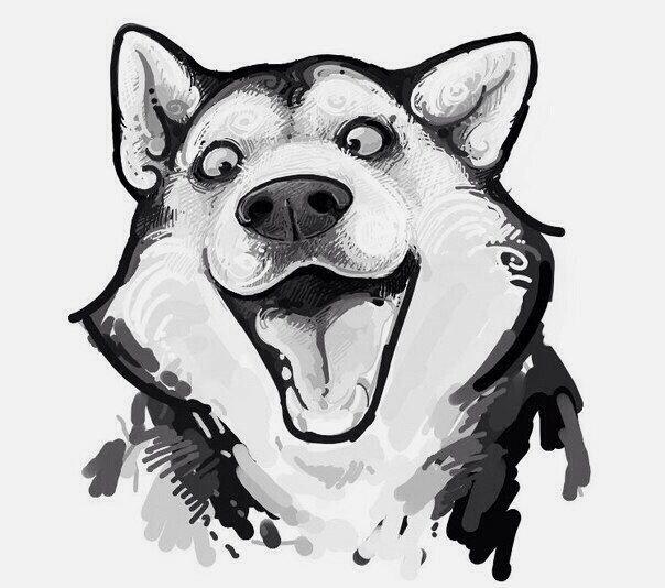 Забавные рисунки собак 017