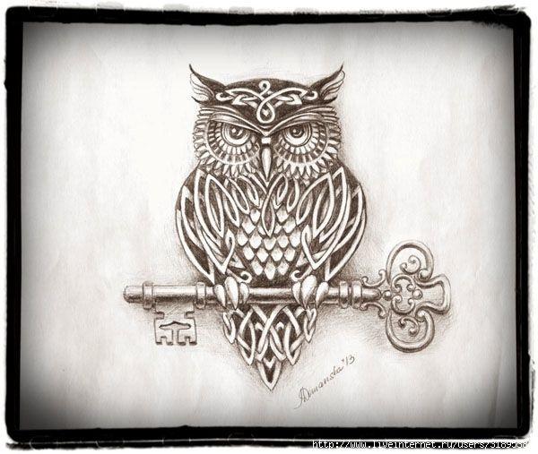 Красивые рисунки карандашом совы 001