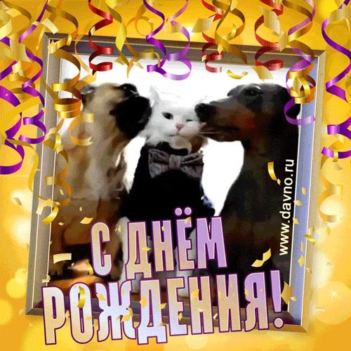 Милые открытки с животными с днем рождения женщине 002