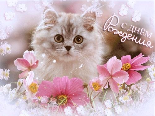 Милые открытки с животными с днем рождения женщине 004