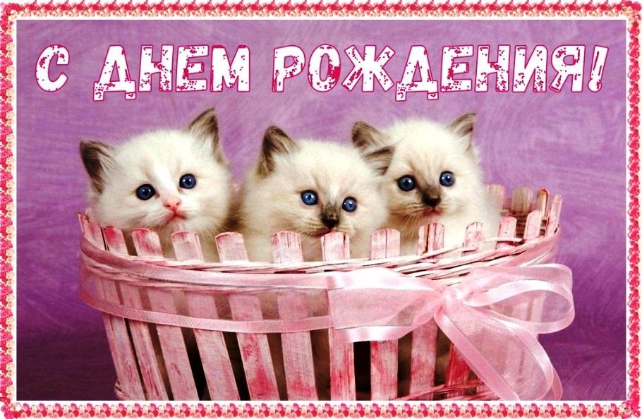 Милые открытки с животными с днем рождения женщине 008