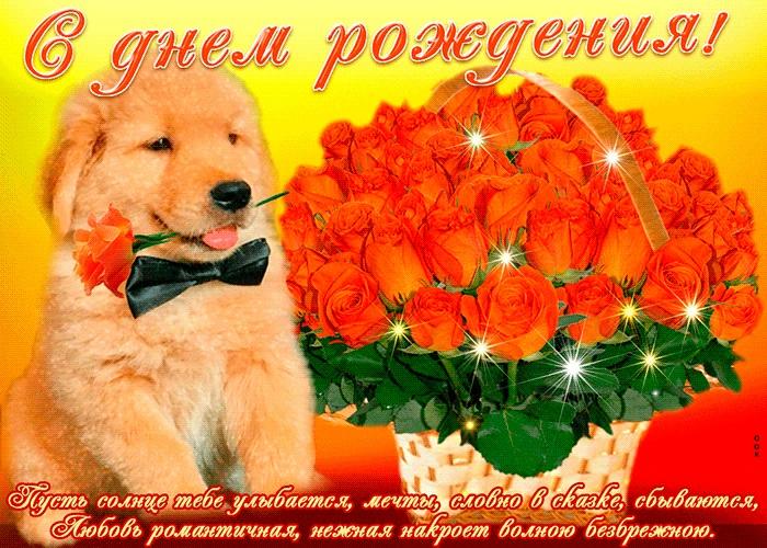 Милые открытки с животными с днем рождения женщине 012