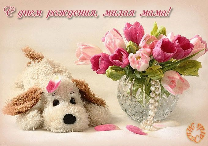 Милые открытки с животными с днем рождения женщине 020