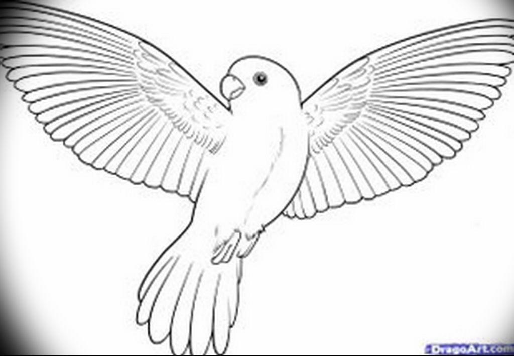 Эскизы тату маленькие птицы 017
