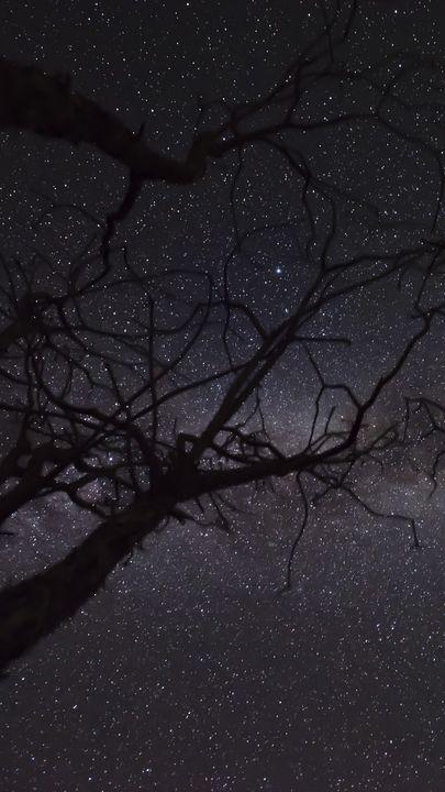 Звездное небо обои на айфон 6 003