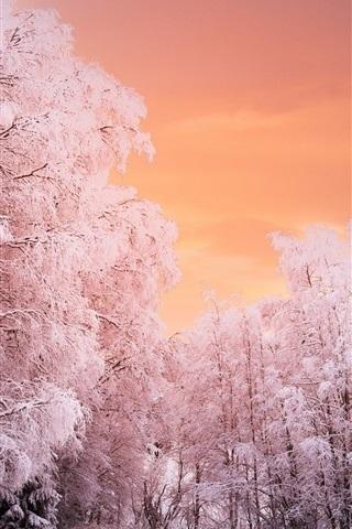 Красивые обои неба на айфон 016