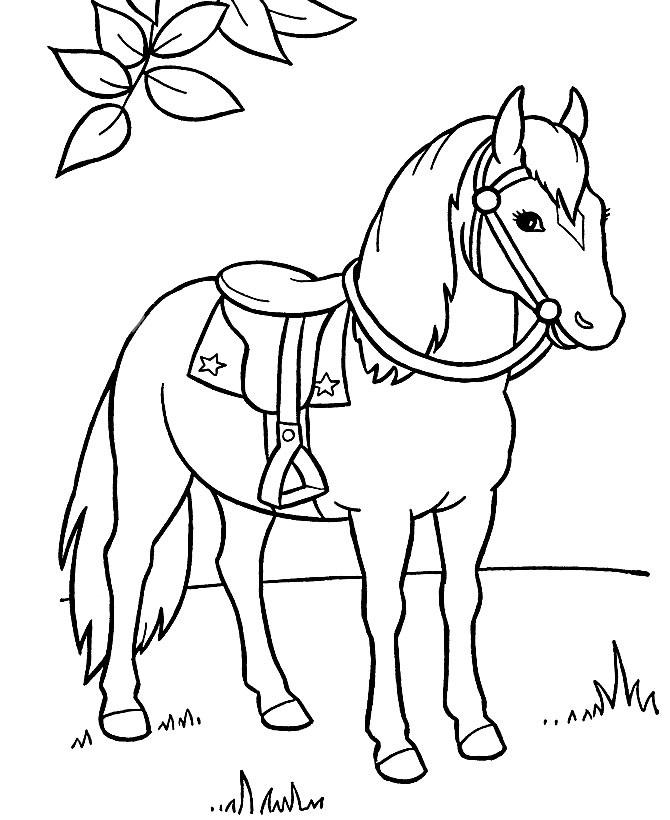 Рисунки лошадей для раскраски 001