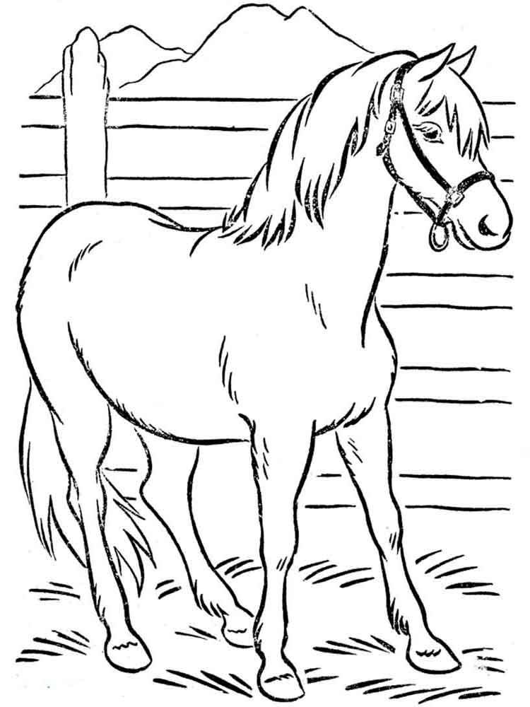 Рисунки лошадей для раскраски 003