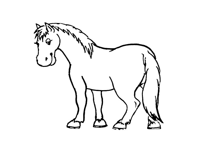Рисунки лошадей для раскраски 004